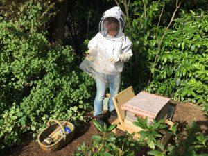 Bienenstockkontrolle